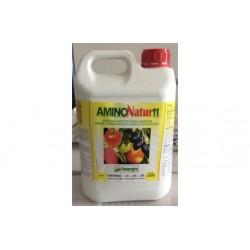 AminoNatur11